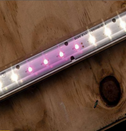 Faraday LED Grow Light – master