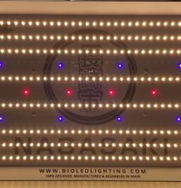 Nagasaki 240W LED para cultivo de cannabis